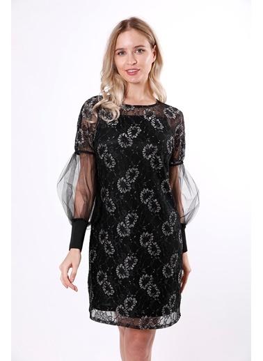 Clıche Kolları Tül Detaylı Dantelli Pudra Elbise Siyah